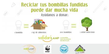 cartel solidarilamp